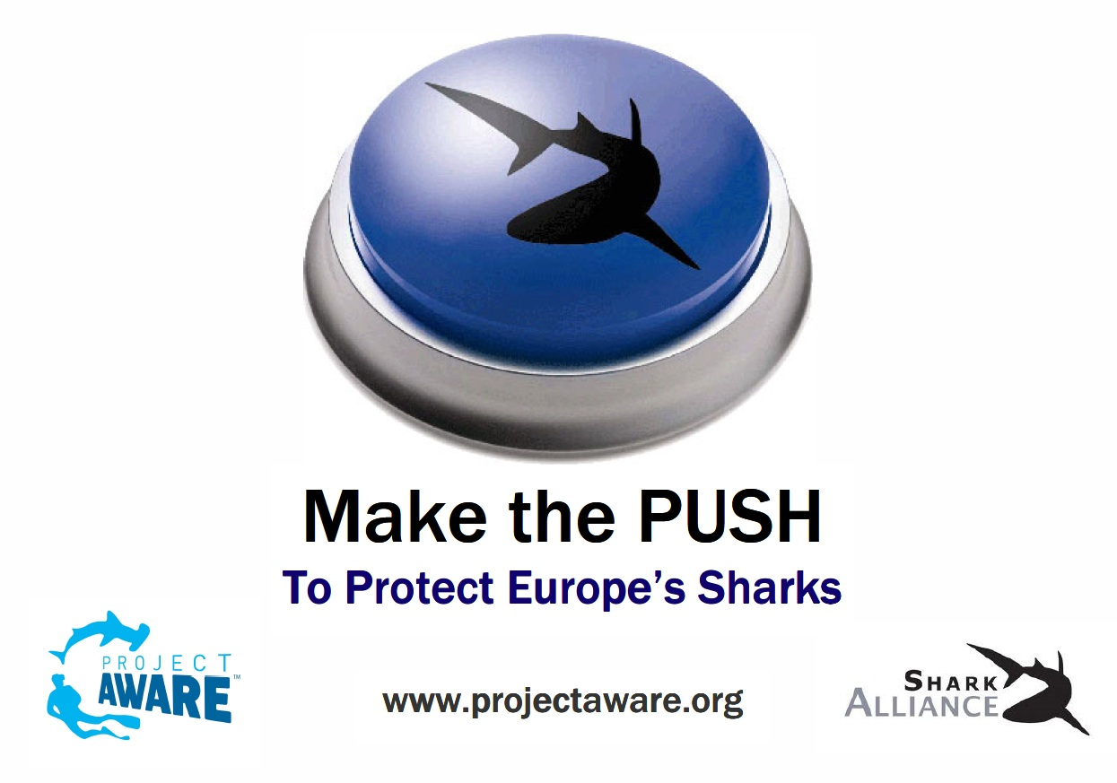 make.the.push.shark